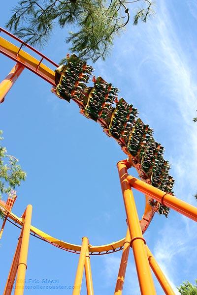 Tatsu Six Tatsu Roller Coaster Six Flags
